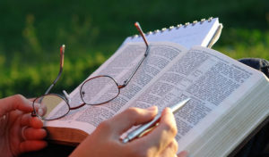 colnk journaling planner gel pens